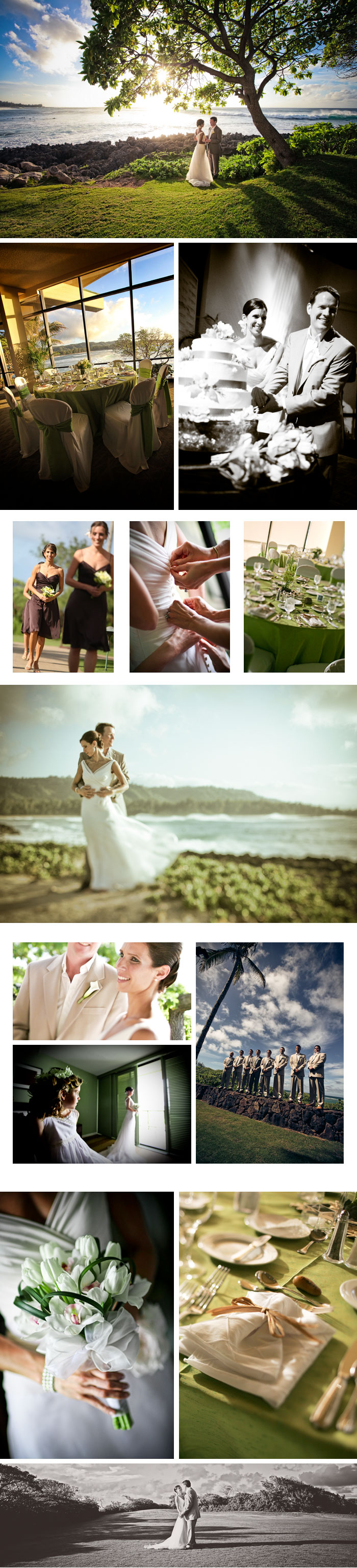 Shawn Starr : Modern Wedding Photography : Pittsburgh Wedding Photographer : Turtle Bay Resort