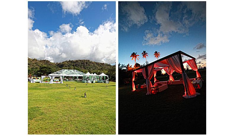 Shawn Starr Photography : Loulu Palm Estate : Destination Wedding